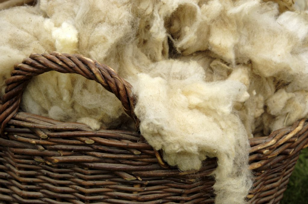 Raising Sheep For Profit: How to Sell Raw Fleece - Countryside