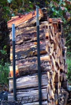 best-way-to-store-firewood