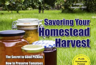 Countryside Homestead Harvest e-edition