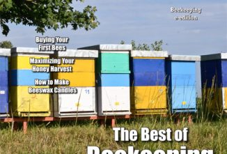 Countryside Beekeeping e-edition