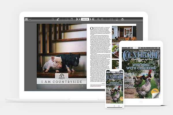 Countryside Digital-Only Subscription