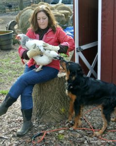 best-farm-dogs