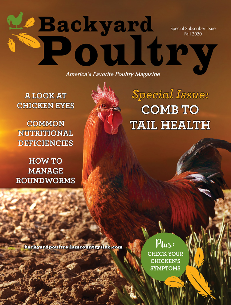 Backyard Poultry Special Issue 2020 — Comb to Tail Health
