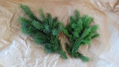 evergreen-christmas-wreath