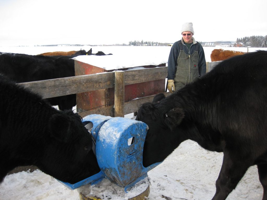 cattle-waterers