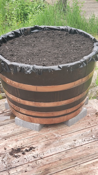 diy-wine-barrel-herb-garden