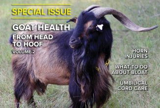 Goat Journal Special Issue: Head to Hoof Health Vol. 2
