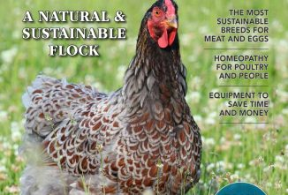 Backyard Poultry Special Issue 2021